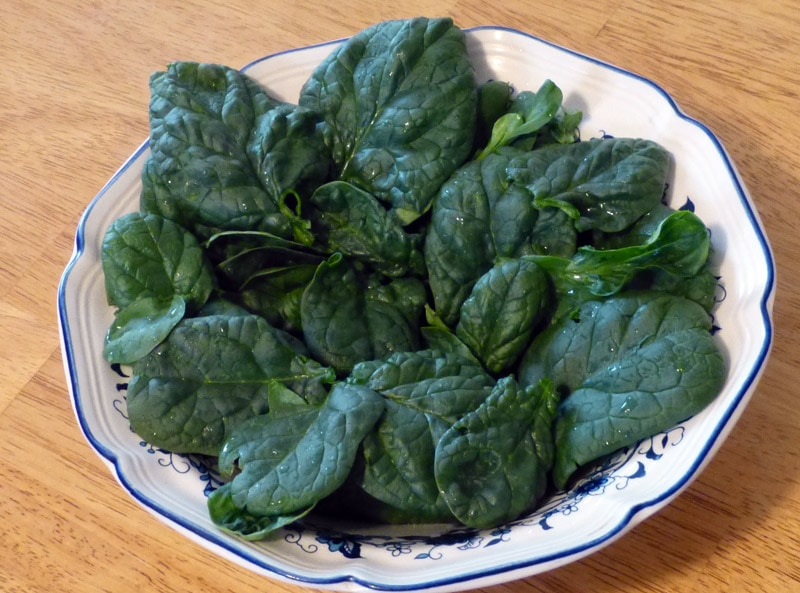 In cold weather spinach is much more delicious.  This was harvested one February.