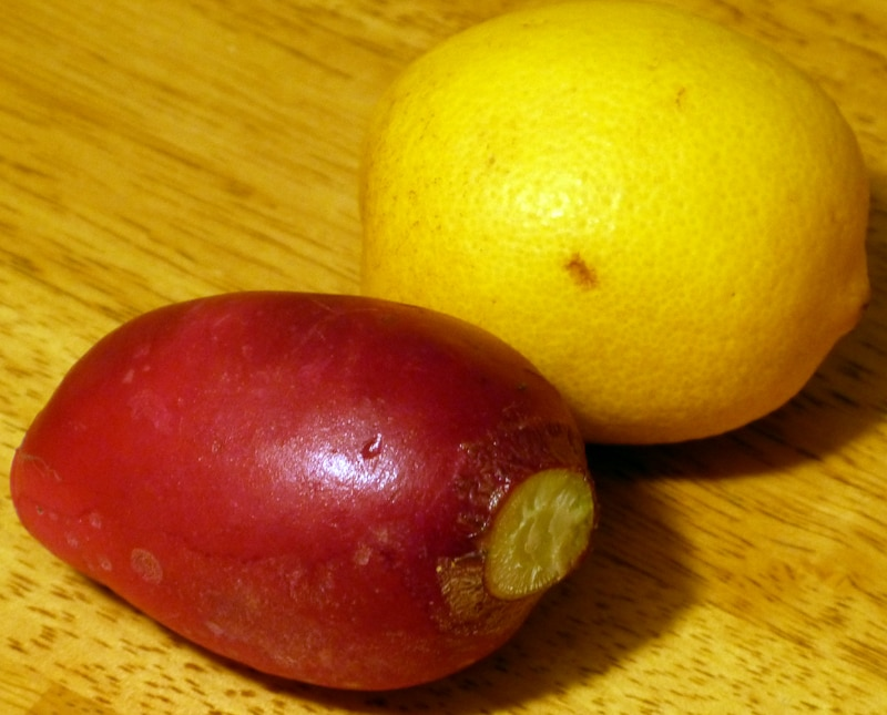 German Giant Radish and a Lemon